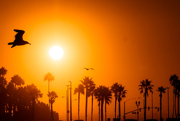 10 Best Livable Cities in California